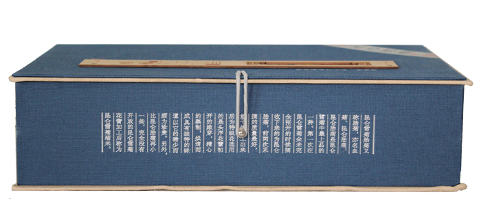 昆仑雪菊胎菊礼盒